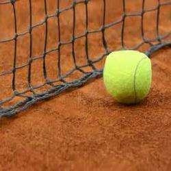 Vip-tennis Paris