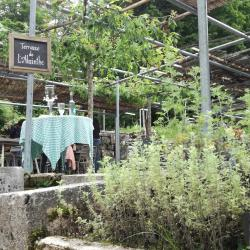 L'absinthe - Restaurant Du Saut Du Doubs Villers Le Lac