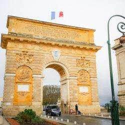 L'arc De Triomphe Montpellier