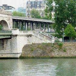 L'île Aux Cygnes Paris