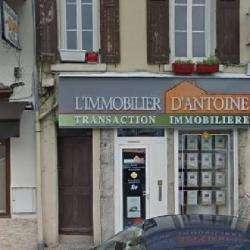 L'immobilier D'antoine Vienne