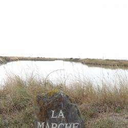 Site touristique Saline de la Marche de Larante - 1 -