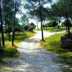 Le Bois Des Espeisses Nîmes