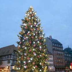Le Grand Sapin De Noël De Strasbourg Strasbourg