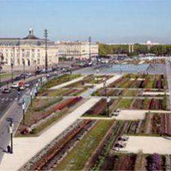 Site touristique Le jardin des lumières - 1 -