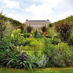 Le Jardin Des Plantes Paris