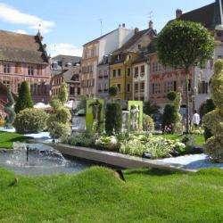 Le Jardin éphémère Mulhouse