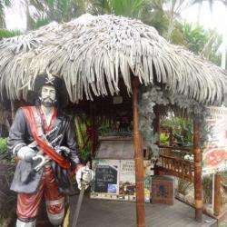 Le Pirate Caribeen Pointe A Pitre