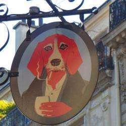 Les Animals Paris