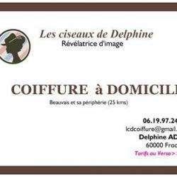 Les Ciseaux De Delphine