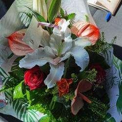 Les Fleurs De Camélias Saint Denis