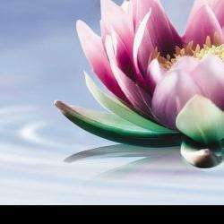 Les Fleurs De La Beauté