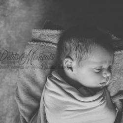 Les Petits Moments De Photographie  Neufchâteau