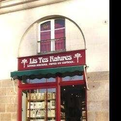 Librairie Lis Tes Ratures Nantes
