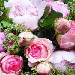Lila's Flowers Bouc Bel Air