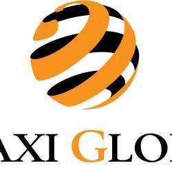 Taxi LYON TAXI GLOBE - 1 - Logo Taxi Globe Lyon -