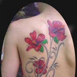 Mds Tattoo Piercing Montpellier