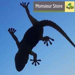 Monsieur Store Marseille