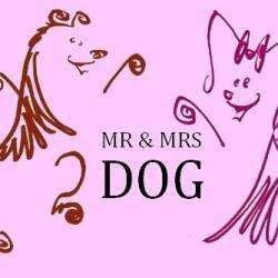 Salon de toilettage Mr & Mrs Dog  - 1 -