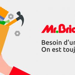 Mr.bricolage Bias