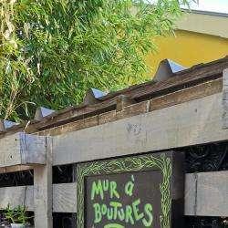 Mur à Boutures Montpellier