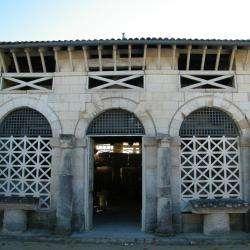 Musée MUSEE ARCHEOLOGIQUE - 1 - L'entrée Des Anciens Abattoirs Devenus Musée Depuis 1931  -