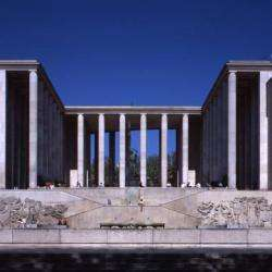 Musée D'art Moderne De La Ville De Paris Paris