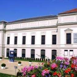 Musée Musée De L'impression Sur Etoffes - 1 -