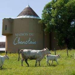 Centres commerciaux et grands magasins La Maison Du Charolais - 1 - Crédit Photo : Page Facebook, Maison Du Charolais à Charolles -