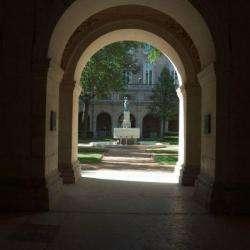 Musée Des Beaux Arts De Lyon Lyon