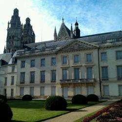 Musee Des Beaux Arts Tours