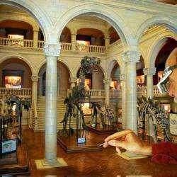 Musée Miniature Et Cinéma Lyon