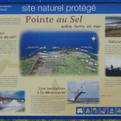 Musee Du Sel Saint Leu