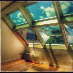 Ng Services Velux Changé