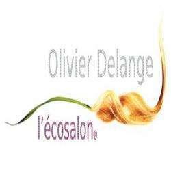 Olivier Delange L'écosalon