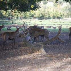 Parc Animalier De Sainte Croix Rhodes
