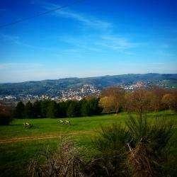 Parc De Montaud Saint Etienne
