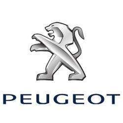 Peugeot Alp Auto Villefontaine