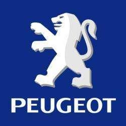Peugeot Garage Halsberghe  Agent