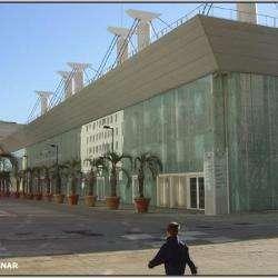 Piscine Olympique D'antigone Montpellier
