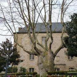 Place De L'hôtel De Ville Brive La Gaillarde