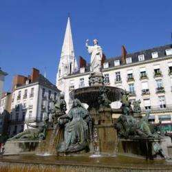 Place Royale Nantes