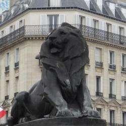 Quartier Denfert Rochereau Paris