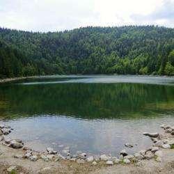 Randonnée Du Lac Des Corbeaux La Bresse