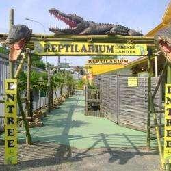 Reptilarium Reptilandes