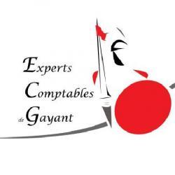 Sarl Experts-comptables De Gayant  Douai