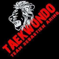 Taekwondo Narbonne Narbonne