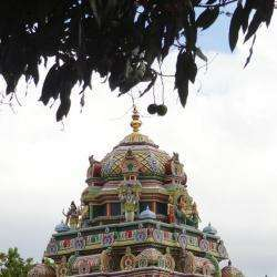 Temple : Le Gôpouram Du Koïl  Saint Paul