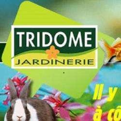 Tridôme Narbonne