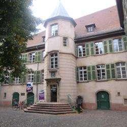 Université Populaire Mulhouse